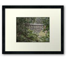 Noojee Trestle Framed Print