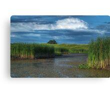 The Wetland Canvas Print
