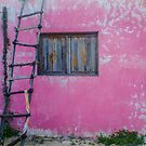 untitled (casa rosa)  by jackson photografix