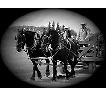 The Black Team II, The Bar U Ranch Photographic Print
