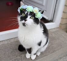 Flower Crown Puss Cat- Minnie by Beth McConnell