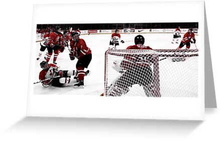 Behind the Net by Laura Sanders