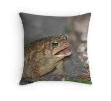Come on it's hot out here!  1 of 4 Throw Pillow