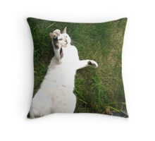 Let`s Hear it for the Cats(Cat Power). Throw Pillow