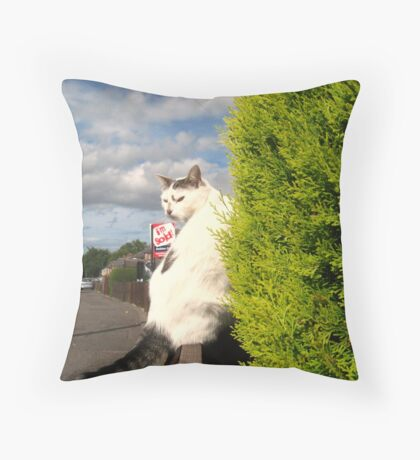He`s Not Really! Throw Pillow