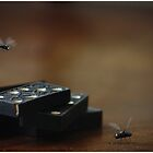 Musca robotica by Cyanidejack