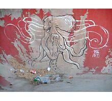 Octopus graffiti Photographic Print