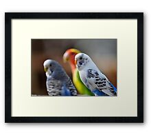 Colurful Triple Framed Print