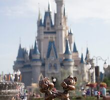 Chip and Dale in Magic Kingdom by ralovins