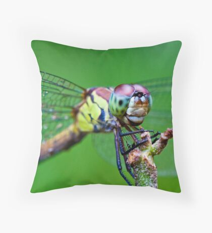 'Up Close & Personal - Dragonfly' Throw Pillow