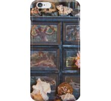 Historic Still Life iPhone Case/Skin