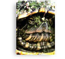 Beneath the Shell Canvas Print