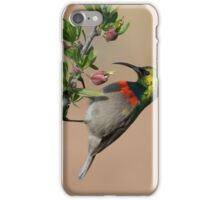 Sunbird iPhone Case/Skin
