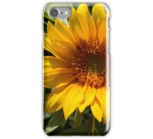 Sunflower, sunflower art, yellow flowers  iPhone Case/Skin