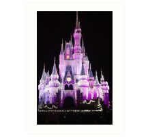 Cinderella Castle at night in Magic Kingdom, Florida Art Print