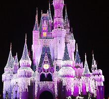Cinderella Castle at night in Magic Kingdom, Florida by vikki26