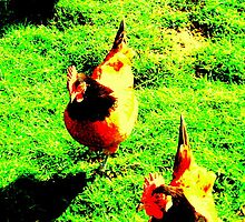 KFC by tupat