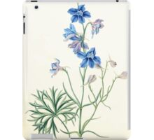 Floral illustrations of the seasons Margarate Lace Roscoe 1829 0266 Delphinium Grandiflorum iPad Case/Skin