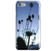 Teasels (Scottish streamside, November) iPhone Case/Skin