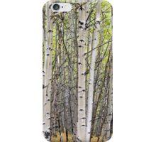 Wall of Aspen iPhone Case/Skin