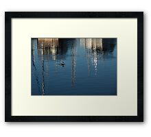 Young Red-Necked Grebe on Silver Framed Print