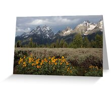 Grand Teton & Mule's Ears Greeting Card