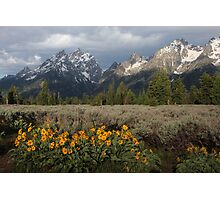Grand Teton & Mule's Ears Photographic Print