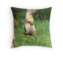 Food? Where! Throw Pillow