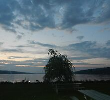 NIGHT FALLS ON CAYUGA LAKE by JoAnnHayden