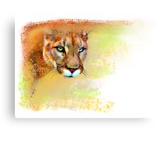 Mountain Lion Oil Pastel Canvas Print