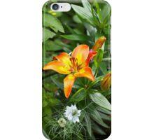 Garden Border with Orange Lily iPhone Case/Skin
