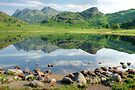 Blea Tarn and the Pikes by Jamie  Green