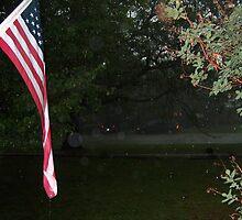 Flag and Rain by sandycarol