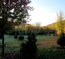 Autumnal morning by Braedene