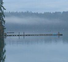 Foggy morning in Longbranch, WA by Rainydayphotos