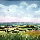 """Mewing Buzzards"" - Neroche Forest, Blackdowns, Somerset by Timothy Smith"