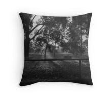 Rays of Sunlight Throw Pillow