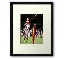 There they are the jousting knights! Framed Print