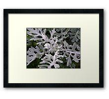 Gargoyles (strange figures among plant leaves) Framed Print