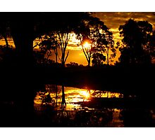 Golden Silhouette Photographic Print