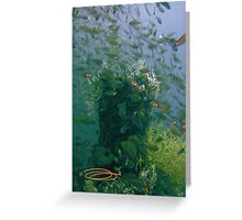 Fish paint my Heaven! Greeting Card