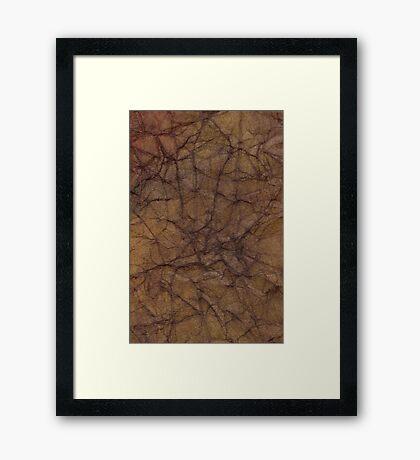 Cerebral  Framed Print