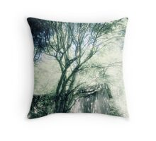 11.7.2010: From the Enchanted Forest Throw Pillow