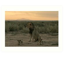 Male lion and cubs Art Print