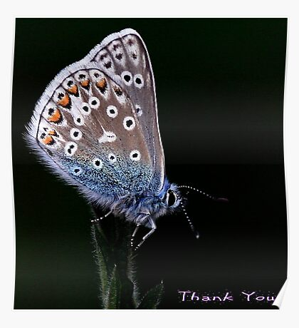 Thank You Cards Poster