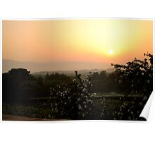 sunrise over tuscan hills with with white flowers in the foreground Poster