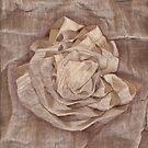 The rose by dominiquelandau