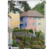 Up The Garden Path Number 6 iPad Case/Skin