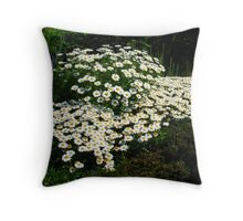 A Patch of Daisies Throw Pillow