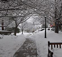 Palmer Square, Princeton NJ  by Michael Bonotto